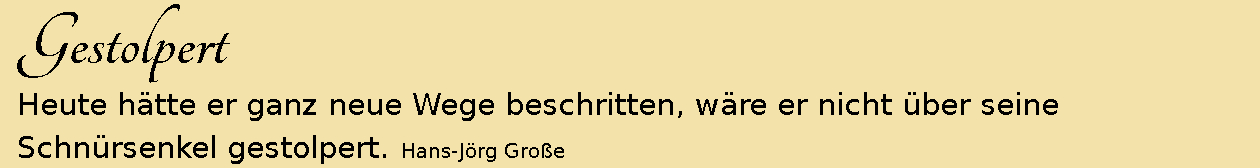 Gestolpert ~ Aphorismen ~ Hans-Jörg Große