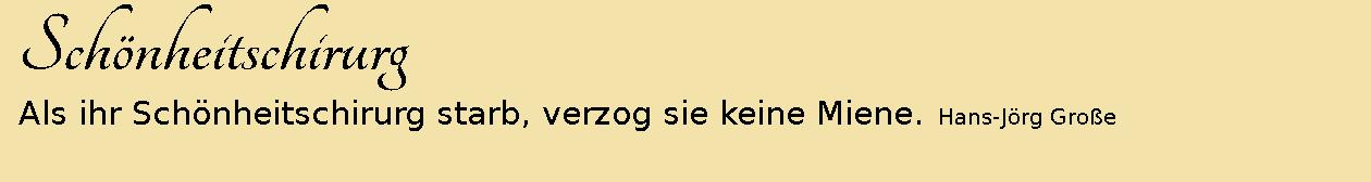 Schönheitschirurg ~ Aphorismen ~ Hans-Jörg Große