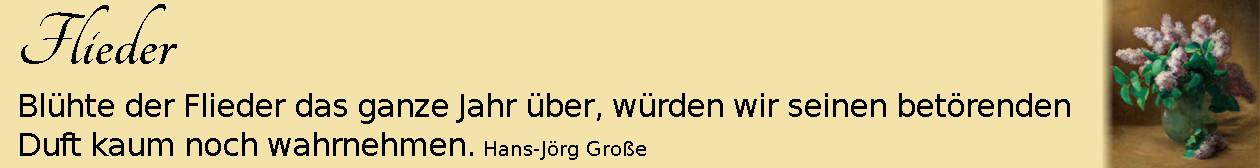 Flieder ~ Aphorismen ~ Hans-Jörg Große | Charles Ethan Porter