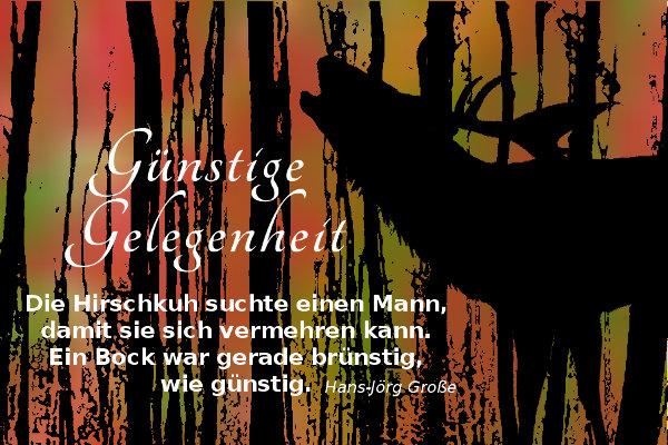 Günstige Gelegenheit ~ Hans-Jörg Große (2014)